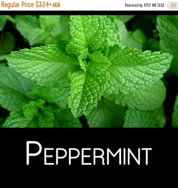 peppermint seeds mentha piperita ideal by caribbeangarden on etsy. Black Bedroom Furniture Sets. Home Design Ideas