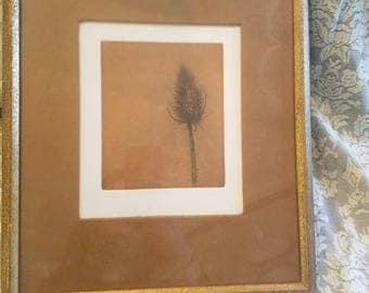 Howard Lessnick signed etching of thistle vintage