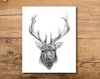 Animal Nursery Art - Animal Nursery Decor - Woodland Animal Art
