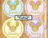 Baby Girl Monthly Stickers Baby girl Shower gift girl Month stickers Minnie Infant month stickers Milestone Monthly baby stickers girl decal