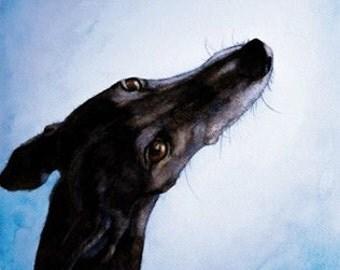 running Greyhounds, greyhound art  running Galgo, galgo espanol art, Sighthound, Whippe, Dog Art print,  custom dog portrait,print 8x12 inch