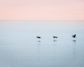 "Three birds flying over ocean, inspirational card - 5x7"" frameable"