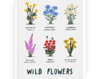 Wild Flowers illustrated botanical print - plant print botany botanical print botanical wild flowers floral floristry flowers print