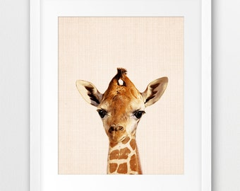 Giraffe Print, Baby Giraffe Wall Art, Safari Decor, African Animals Print, Nursery Animal Decor, Animal Photo,Kids Room Decor, Printable Art