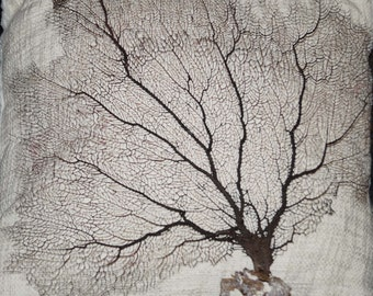 Bulk 3 Sea Fan, Dried Sea Fan, Craft Seafan, Brown Seafans, Seafans, Sea Fans, Wholesale Sea Fans