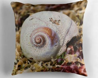 Ocean Decor, Shell Pillow, Shell Decor, Seashells, Kelp, Sea Shell Decor, Moon Snail, Spiral, Nature Decor, Nature Cushion, Beach Decor