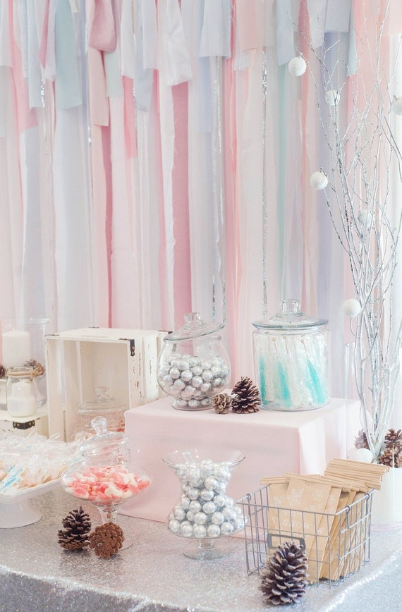 Winter Wonderland Backdrop Gender Reveal Backdrop Winter