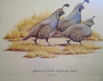 Afternoon stroll california quail 1985 signed and numbered R.L. Kothenbeutel No 3215 / 20,000