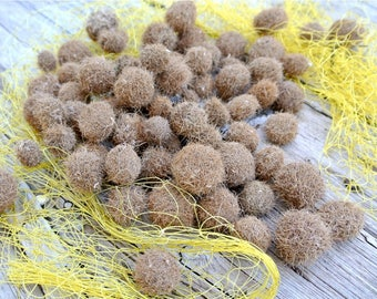 Tiny Seaweed Balls, 70pcs, Neptune Balls, Seagrass, Beach Finds, Posidonia Oceanica, Beach Decor, Ecofriendly Decor