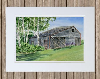White Paper Birch Trees and Rustic Old Barn Painting - Original Watercolor Landscape Art - Maine Paintings by Beth Whitney