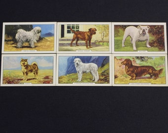 Vintage Cigarette Card Gallaher Ltd DOGS Second Series 1938 Have 6/48 For Sale Excellent Condition Collectable Craft Collage Scrapbooking
