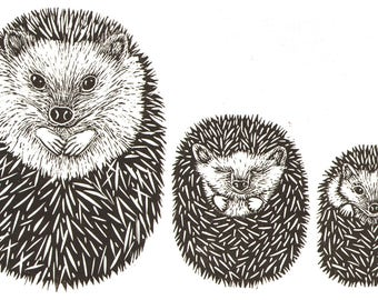 "Handmade Signed Lino Print ""Curled Up Hedgehogs"". It's sleepy time for hedgehogs, By Laura Robertson."
