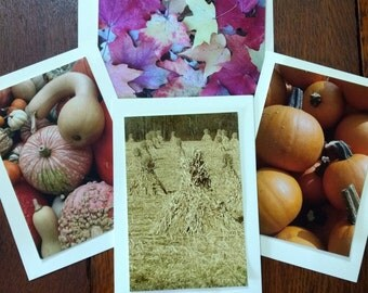 Autumn Note Cards, Rural Note Cards,Seasonal Note Cards,Gift Note Cards,Seasonal Decor,Fall Decor,Autumn photographs,Rural photos,4 for 12
