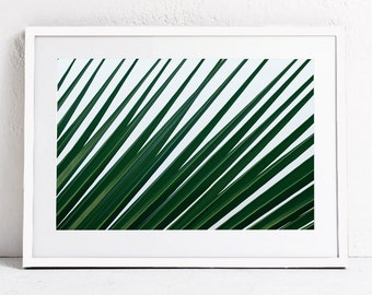 Modern Minimalist Art Palm Print, Palm Leaf PRINTABLE Photography, Green Palm Leaf Print, Emerald Green Wall Art Print INSTANT DOWNLOAD Art