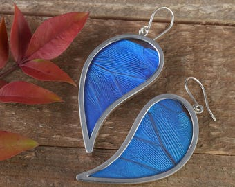 2.6 inch Blue Butterfly Wing Earrings in Sterling Silver- Earrings, Real Butterfly Earrings, Butterfly Jewelry, Butterfly Wing Jewelry J1176