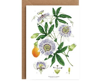 A6 Greeting Card - White Passion Flower
