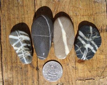Sea stones with white veins-sea striped stones