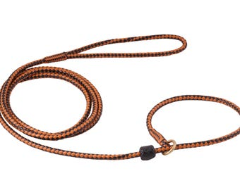 Braided Leather Slip Leash with Stop for Dogs length 5ft or 152cm, thikness medium 3/16in or 5mm