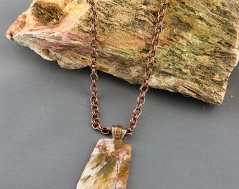 A Beautiful Petrified Wood Pendant