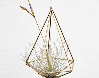 Air plant holder geometric Himmeli Decahedron diamond Nr01 (plant incl.