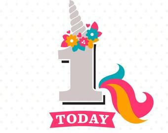 Unicorn Birthday SVG, 1st Birthday SVG, Girls Birthday iron on file, 1st Birthday Shirt file, Unicorn svg file, First Birthday DXF