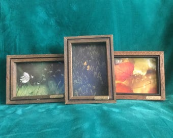 3 rustic real colorado barnwood 3x5 frames signed by artist