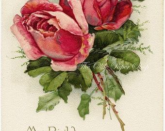 Pink Red Roses Rosebuds Greenery on White Background Vintage Birthday Embossed Postcard