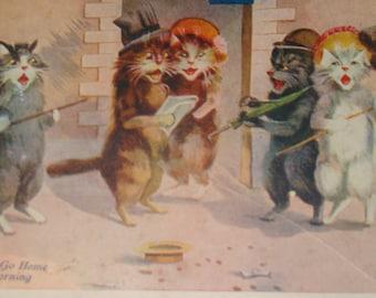 SALE Cute Cat postcard, Artist Signed?