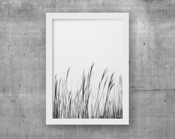 Black and white photography, Bedroom art decor, Minimalist wall decor, PRINTABLE picture for bedroom, Gray nature photo art, Digital art A3