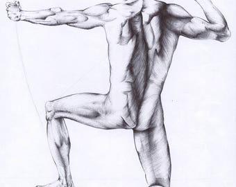 male nude art artistic nude young man print copy hand drawing pen