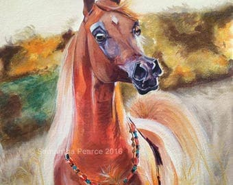 Judah,  Original Watercolour, Arabian Horse