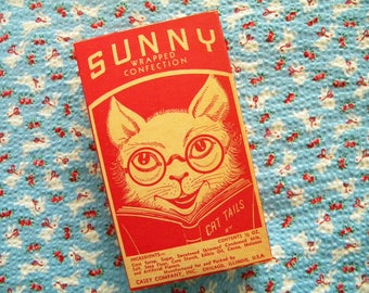 Vintage Candy Box Sunny Wrapped Confection Casey Company Kitty Cat and Dog