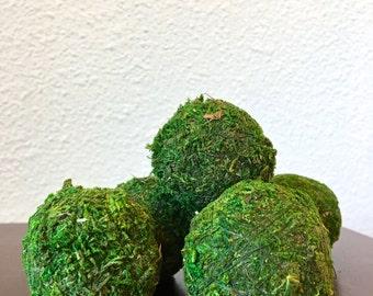 "2"" Natural Preserved Moss Ball - Green"