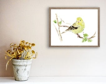 Eastern goldfinch watercolor print, goldfinch art print,  Birds art, lime, yellow, wild canary watercolor, New Jersey state bird, wild life