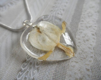 Undying Love-White Bleeding Heart Pressed Flower Glass Heart Pendant-Symbolizes Undying Love-Nature's Wearable Art-Gifts Under 25