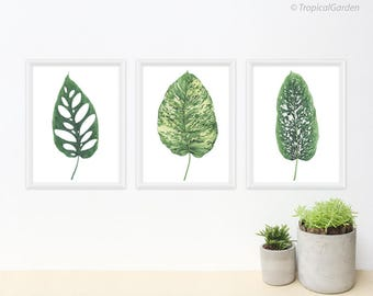 Tropical Leaf Print Set - Any THREE Tropical Leaf Art, Botanical Prints / 8x10 OR 8x11 Watercolor Leaves, Tropical Wall Decor