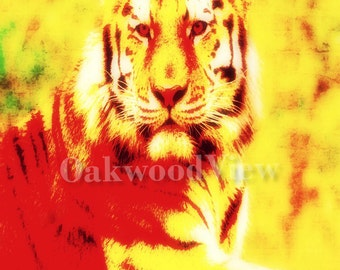 Bengal Tiger #2, Surreal Art Print, New 4x6 Color Print in 5x7 Off-White Mat, Nature Wildlife, FREE SHIPPING