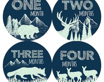 FREE GIFT, Woodland Nursery Decor Boy, Woodland Monthly Baby Stickers Boy, Baby Boy Woodland Month Stickers, Fox Deer Bear Wolf, Navy, Mint