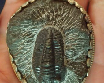 Trilobite Fossil Pendant in Matrix with Monkey in Silverwork on back