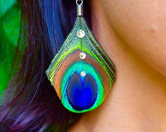 GLAM PEACOCK Feather Earrings