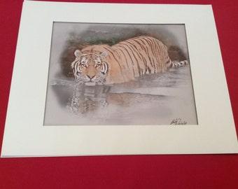 Tiger, Art Print Wall , Art Wall Decor