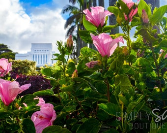 LDS Laie Temple Photograph - Hibiscus - Digital Download - Printable