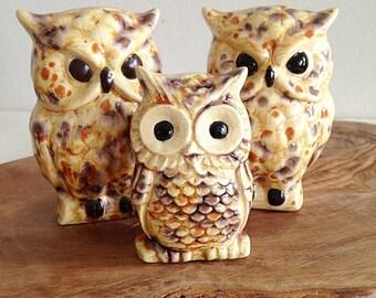 Vintage Hobbyist Ceramic Owl Family