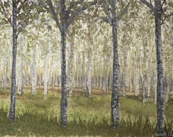 "Birches Woodland Painting - Watercolour 9"" x 12"""