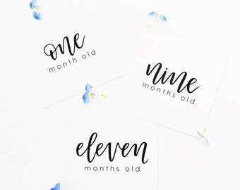 Hand Lettered Baby Milestone Cards / 1 Month to 1 Year - 12 Square Cards / Baby Shower Gift, Newborn Gift / Charitable Donation