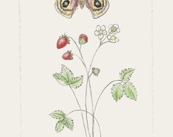 194 Tiny Botanical Strawberry Gypsy Moth | Fairy Garden