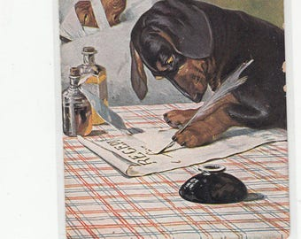 Dr Dachshund Writing A Script For His Dachund Mostly Bandaged Patient Must See