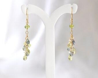 14K Gold. Multi-Color Sapphire earrings, green sapphire Earrings, Yellow Sapphire Earrings, September Birthstone Earrings, Gift For Her