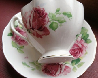 Large Pink Roses footed Queen Anne Teacup and Saucer trimmed in gold
