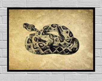 Vintage Rattlesnake Dictionary page, Old Paper, Vintage Dictionary page, Rattlesnake poster, Vintage Rattlesnake Art, Rattlesnake Print H3